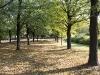 11_10_21_jesien_w_parku_79